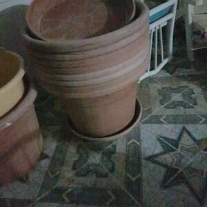 Tunis-maison_et_jardin-des-pots-de-plente
