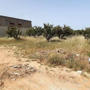 Tunis-immobilier-A-Vendre-Terrains-500m²