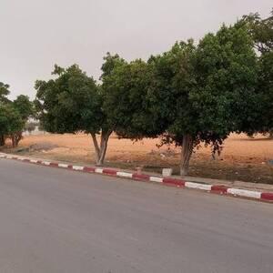 Kairouan-immobilier-A-Vendre-Terrains-500m²