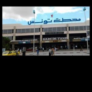 Tunis-immobilier-ستوديو-مفروشة-للايجار-باليوم-90د-تونس-العاصمة