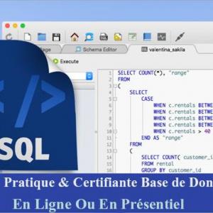 Tunis-emploi_et_services-Réduction-Formation-Base-de-donnée-SQL
