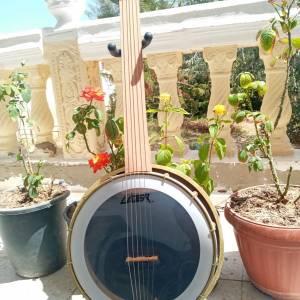 Sfax-loisirs_et_jeux-fretless-banjo-بانجو-شرقي-و-غربي