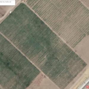 Nabeul-immobilier-A-Vendre-Terrains-4000m²