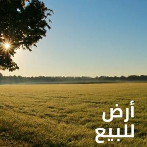 Gafsa-immobilier-A-Vendre-Terrains-70000m²
