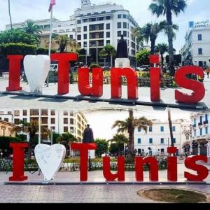 Tunis-immobilier-ستوديو-مفروش-للايجار-باليوم80د